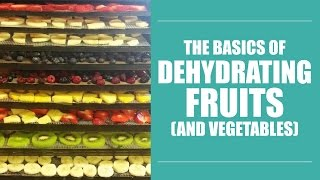 Dry It, You'll Like It: Basics of Dehydrating