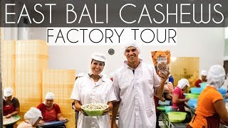EAST BALI CASHEWS FACTORY TOUR - BEST GRANOLA ON PLANET EARTH