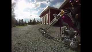 The Glowing Dolphin - Harley-Davidson - Panhead - Chopper Ride
