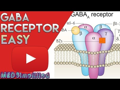GABA Receptor( BZD) - Structure and Mechanism of Action