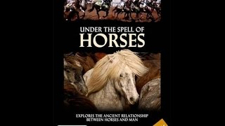 Under the Spell of Horses - INDIA