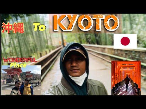 Sightseeing (Arashiyama Bamboo Forest,torokko station with romantic train) in KYOTO, japan