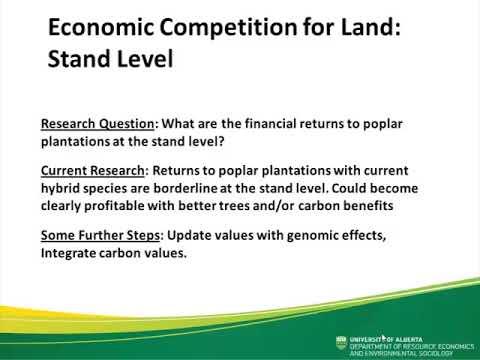 Economic prospcts for poplar plantations in Canada