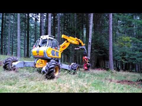 Moderno Abbattimento Con Processore Forestale