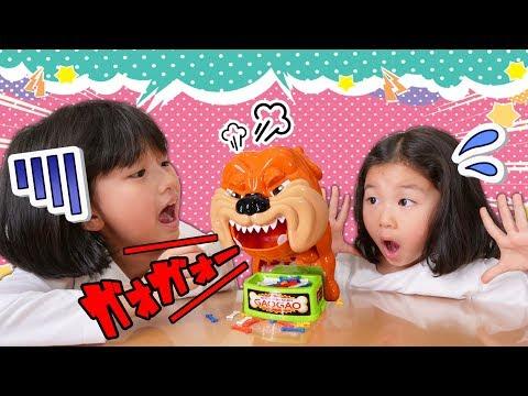 ハラハラドキドキ><怖がりおーちゃん猛犬と対決!!もっと番犬ガオガオ himawari-CH