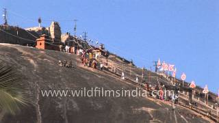 Devotees head towards the Chandragiri Temple - Karnataka