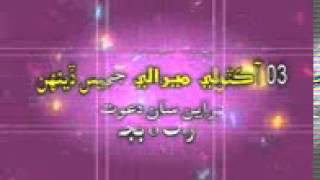 Riaz mirali New Album Shaman Ali mirali 2014