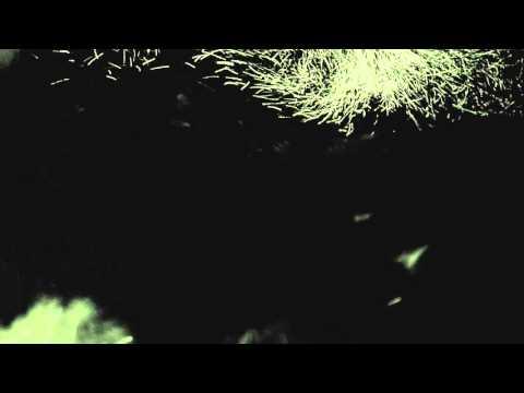 Fink - 'Pilgrim' (Paula Temple Vocal Remix)