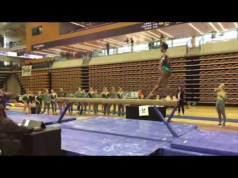 2018 Tribe Women's Gymnastics: Towson Meet Highlights