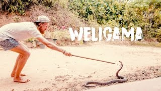 WELIGAMA - WAVES AND SNAKES | VLOG #33