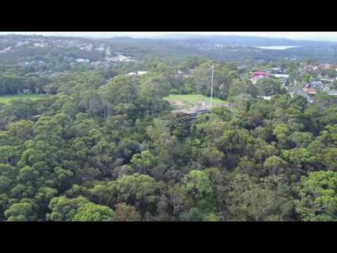 Beacon Hill,  Sydney Australia