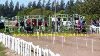 Gran Premio Inauguración: Buen Viaje - Las Garzas (01-06-14)