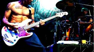 Red Hot Chili Peppers — Snow (Hey Oh) isolated bass track