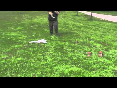 Testing continuous loop - Lure Coursing