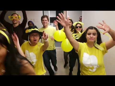 Rotman Class of 2019 Section 2 Video