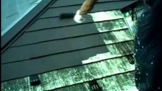 【外壁塗装】実際の工事の様子をお見せします thumbnail