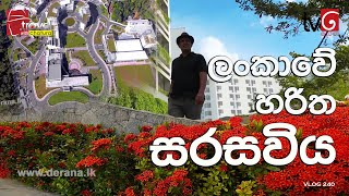 Travel With Chatura | ලංකාවේ හරිත සරසවිය  | Vlog 241 Thumbnail
