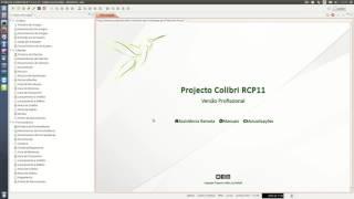 Projecto Colibri RCP 11 - Comunicação Documentos Transporte