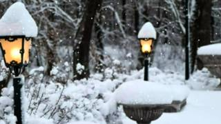 САЛЬВАТОРЕ АДАМО - ПАДАЕТ СНЕГ(Снег кружится, Ты сегодня не придёшь. Снег кружится, Боль отчаянья и дрожь. Грустная картина: Холод и разл..., 2012-06-23T18:25:28.000Z)