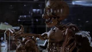 24 пары хромосом ... отрывок из фильма (Дум/Doom)2005