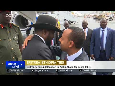 Hopes for peace as Ethiopia, Eritrea call for truce and talks thumbnail