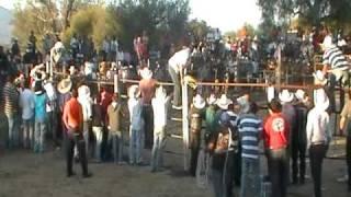 la fiesta de san francisco rancho viejo 2011