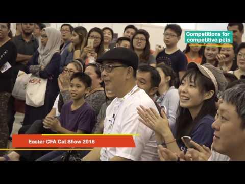 Pet Expo Singapore 2016 - Show Highlights