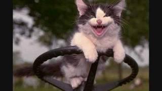 Manhattan Transfer - That Cat is High