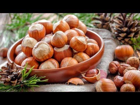 ФУНДУК полезные и опасные свойства лесного ореха!