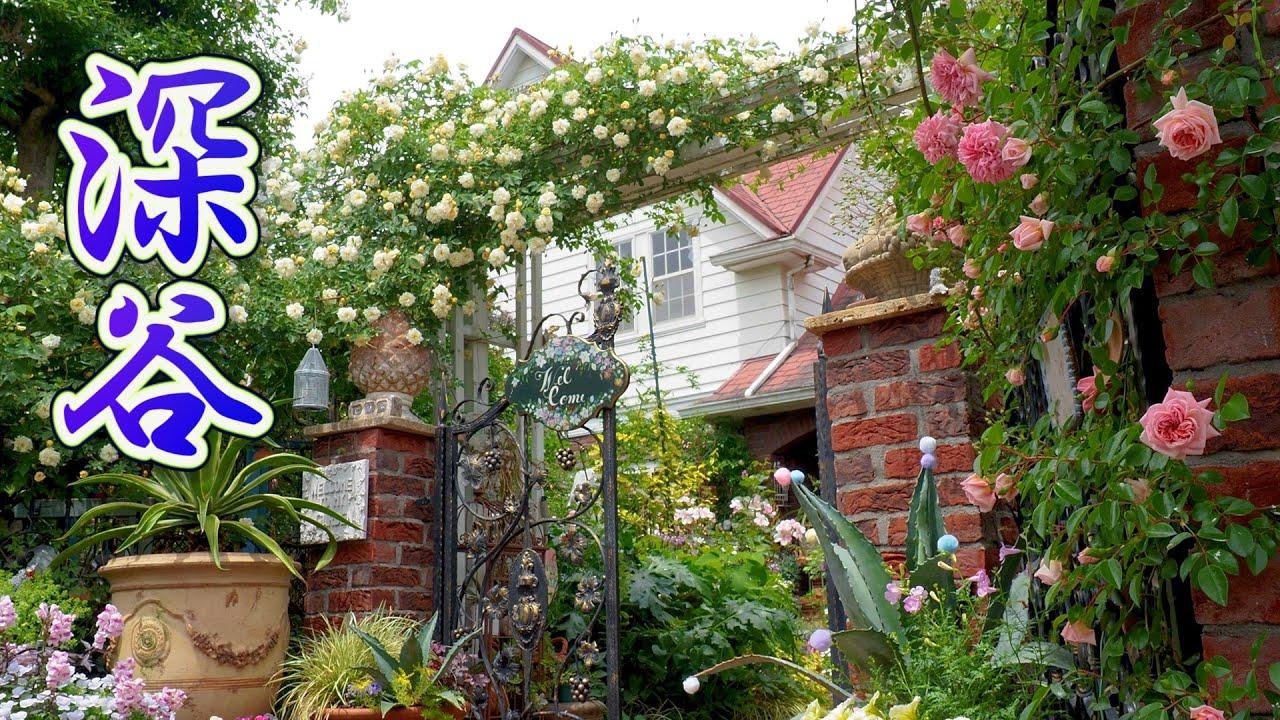 【Private Residence】Private Gardens of Citizens in Fukaya City. Open Garden 2021. #4K #オープンガーデン