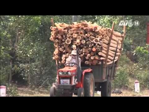 VTC14_Đắk Lắk: Người lái công nông được đào tạo GPLX hạng A4 miễn phí