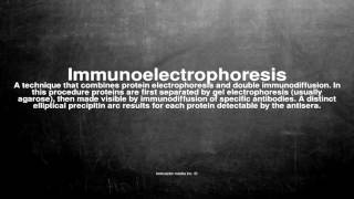 Medical vocabulary: What does Immunoelectrophoresis mean