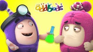ODD ANATOMY | Cartoons For Children | The Oddbods Show