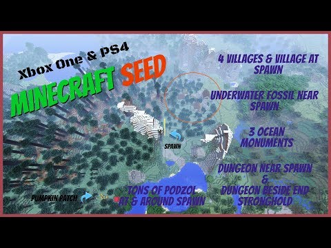 Village spawn, Underwater Fossil, Podzol, and dungeon around spawn seed May 31 2017