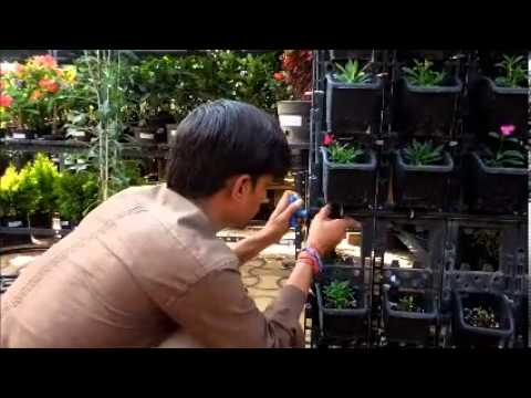 Installation of Drip Irrgation System for Vertical Gardens YouTube