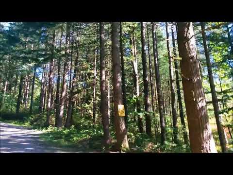 Bear Mountain, Mission BC