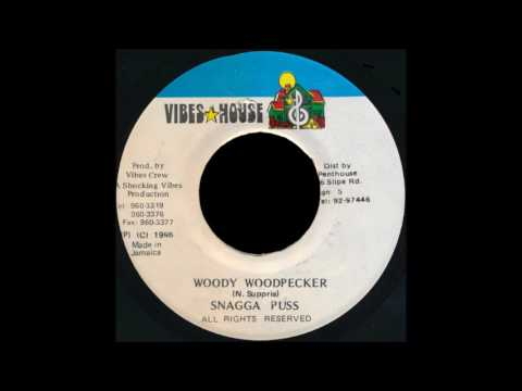 Snagga Puss -  Woody Woodpecker  (1995)