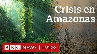 Por qué importa el Amazonas y lo que se sabe sobre cómo empezaron los incendios.