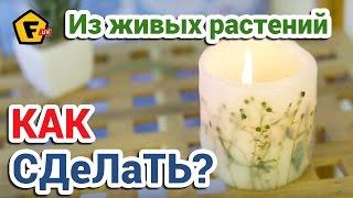 КАК СДЕЛАТЬ СВЕЧУ С ГЕРБАРИЕМ в домашних условиях ✔ Декоративные свечи своими руками дома