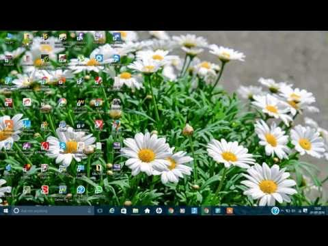Wildlife Windows 7 Sample Video from YouTube · Duration:  31 seconds