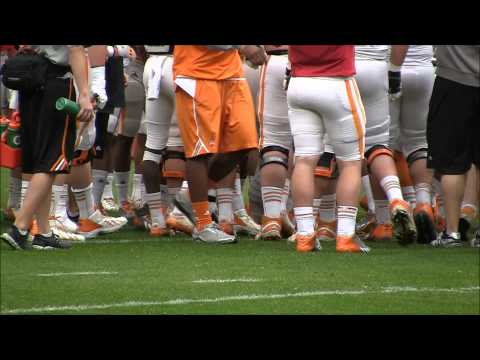 Tennessee football scrimmage at Neyland Stadium on March 29, 2014