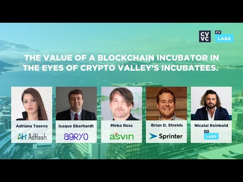 The Value of a Blockchain Incubator in the Eyes of Crypto Valley's Incubatees.