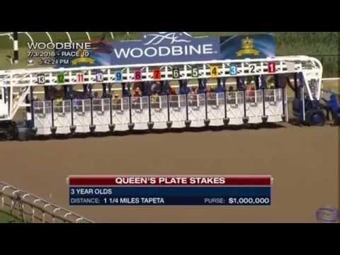 รายการ Queen's Plate Stakes 2016 - Woodbine - Sir Dudley Digges