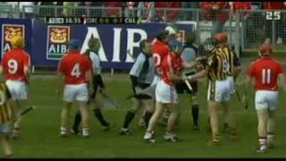 Cork v Kilkenny hurling fight