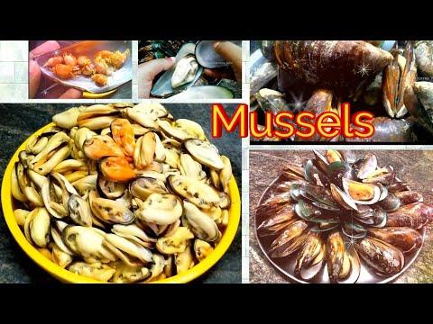 MUSSELS/சிப்பி-தோடு|| How To Cook & Clean Mussels in Tamil || சிப்பி மீன் சீசன் துவக்கம் || Seafood