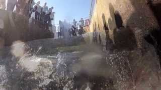 Chinook Salmon Run 2013 - Nimbus Fish Hatchery - Sacramento - Opening day of fish ladder - GOPRO2