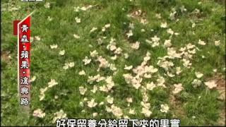 說起日本的青森縣,很多人都知道它是「蘋果的故鄉」,蘋果年產量高達45...