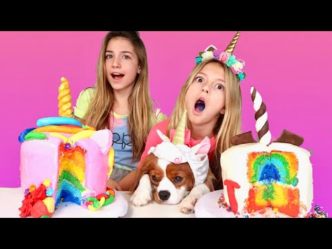 CAKE CHALLENGE  | Rainbow Unicorn |  How to | Quinn Sisters