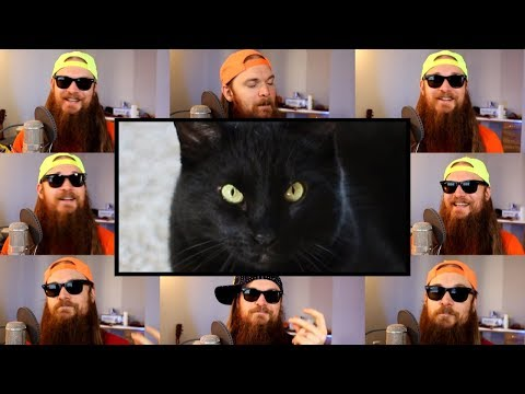 Everytime - A Failed Kitty Romance 😿 Acapella by Smooth McGroove (Boy Pablo cover)