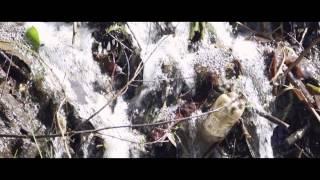 FUNK DEEPSTAR & SKAIVA FEAT. RAKEEM - Day Dreamer (Original Mix)